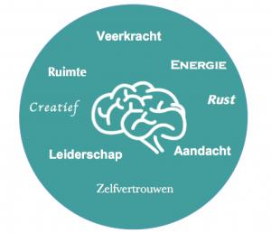Mindfulness, Mindful Werken, Mindful Leiderschap, Re-integratie, burn out, omgaan met verandering, job craften, MBSR, zelfvertrouwen, rust, energie, veerkracht, zin in werk, werken met aandacht stress