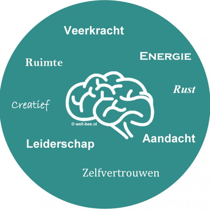 #Mindfulness Hoorn Westfriesland, #VMBN, #Mindfulness, #Mindful Werken, #Mindful Leiderschap, #Mindful Coaching, Re-integratie, burn out, omgaan met verandering, #job craften, MBSR, zelfvertrouwen, rust, #energie, #veerkracht, zin in werk, #stress, #burn out