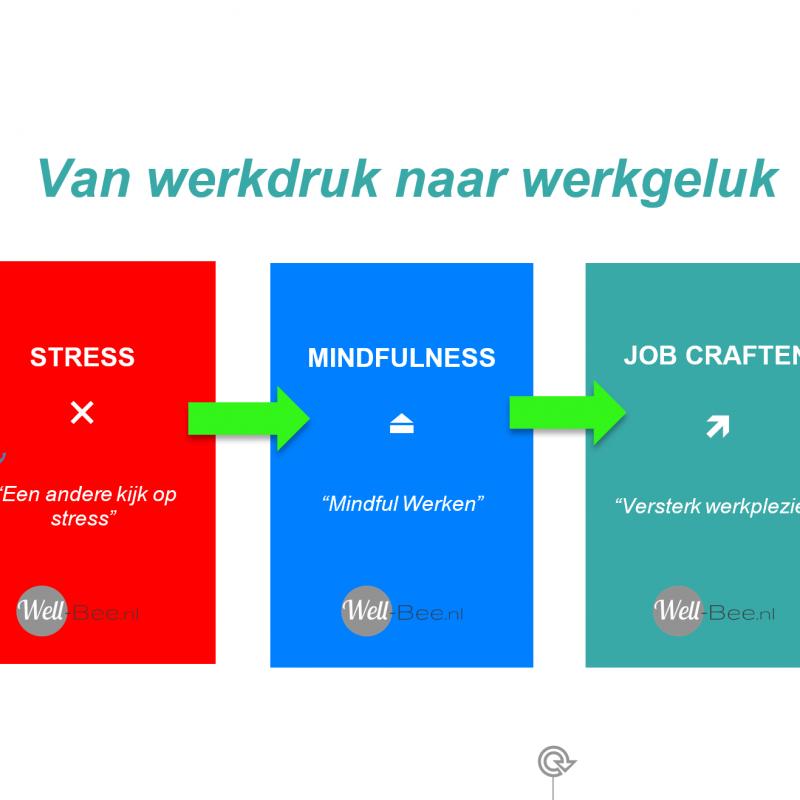 Een interactief programma over stress, mindfulness en jobcrafting om beter de druk van alledag aan te kunnen