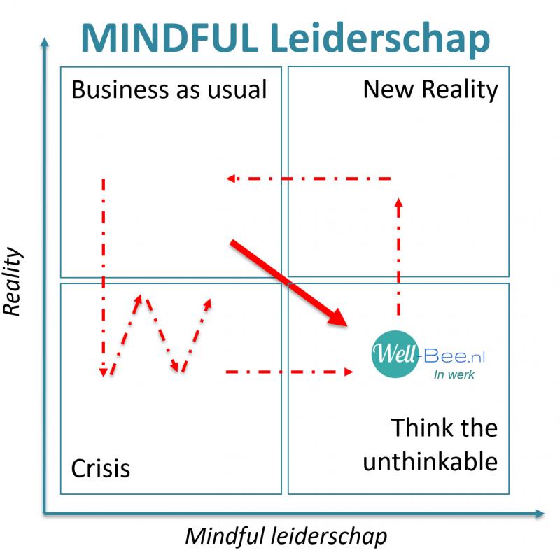 Mindful leiderschap leadership, new reality, omdenken, anders kijken, veerkracht, Hans Sjerps